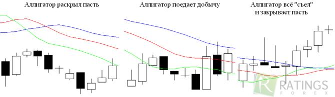 Аллигатор Индикатор Инструкция - фото 5